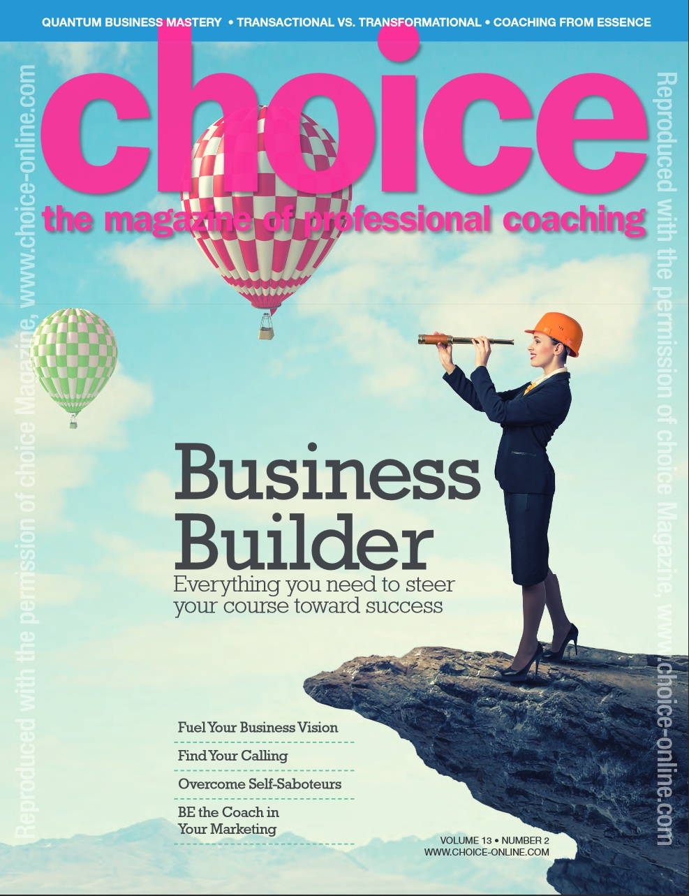 Choice Business Builder issue